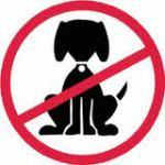 animali non ammessi nei bungalow